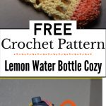 1. Lemon Water Bottle Cozy