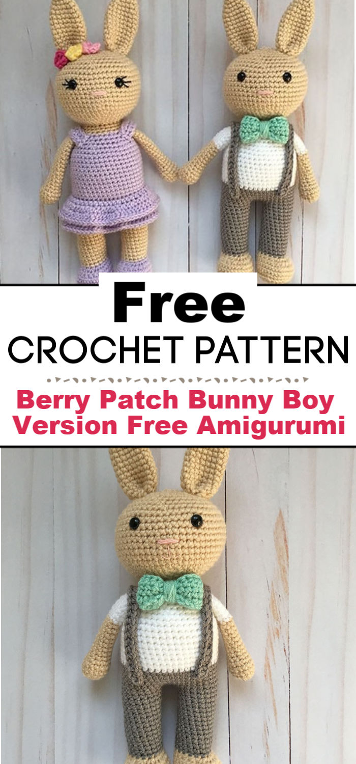 Berry Patch Bunny Boy Version A Free Amigurumi Pattern