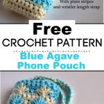 Blue Agave Phone Pouch