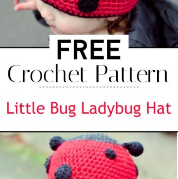 How to Crochet a Little Bug Ladybug Hat