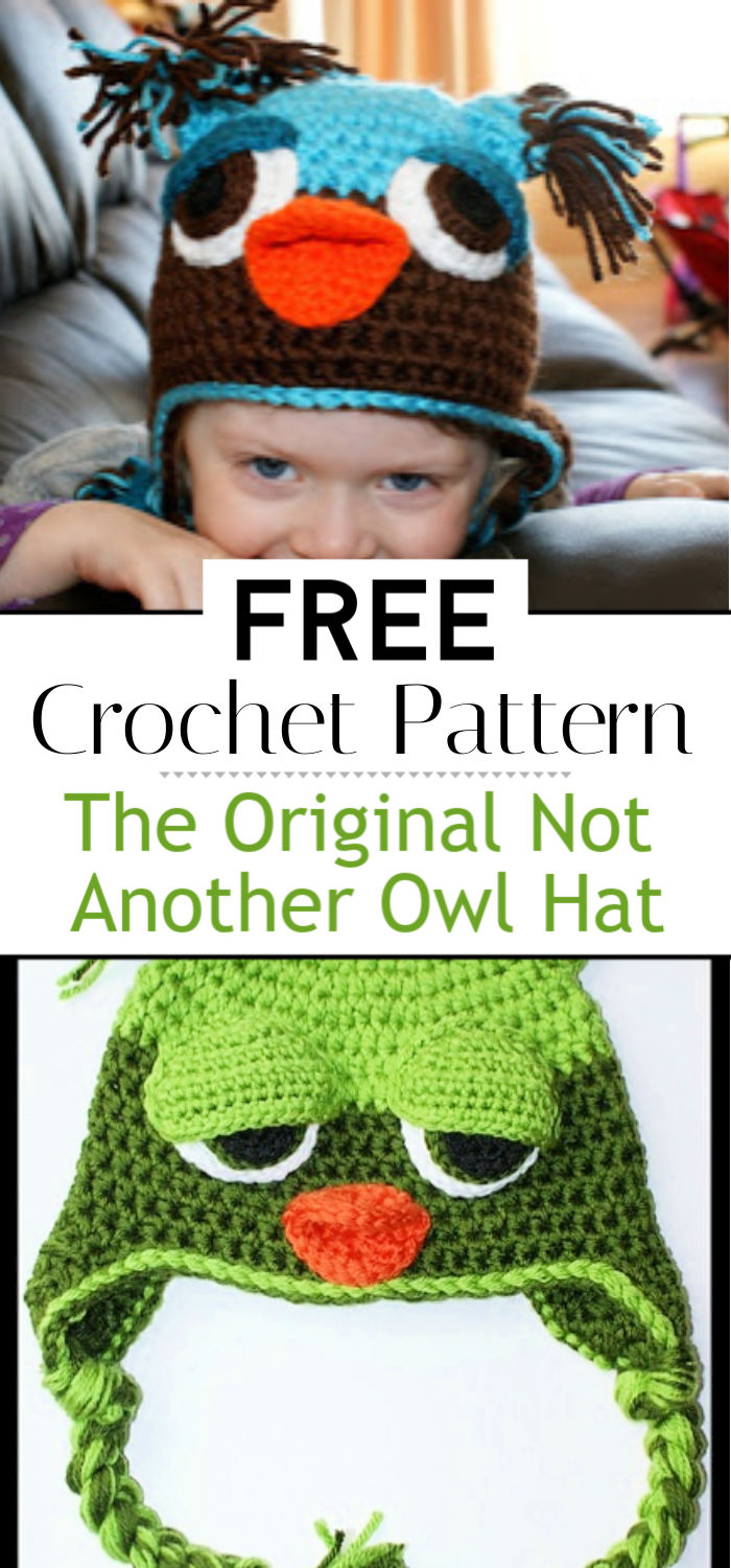 The Original Not Another Owl Hat